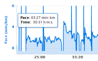 Detail of the data showing my sprint followed by sustained race pace