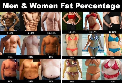 Body Fat Percentage image (source)