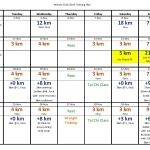 November 2014 Training Plan