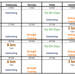 Modified training plan for recovery and cross-training