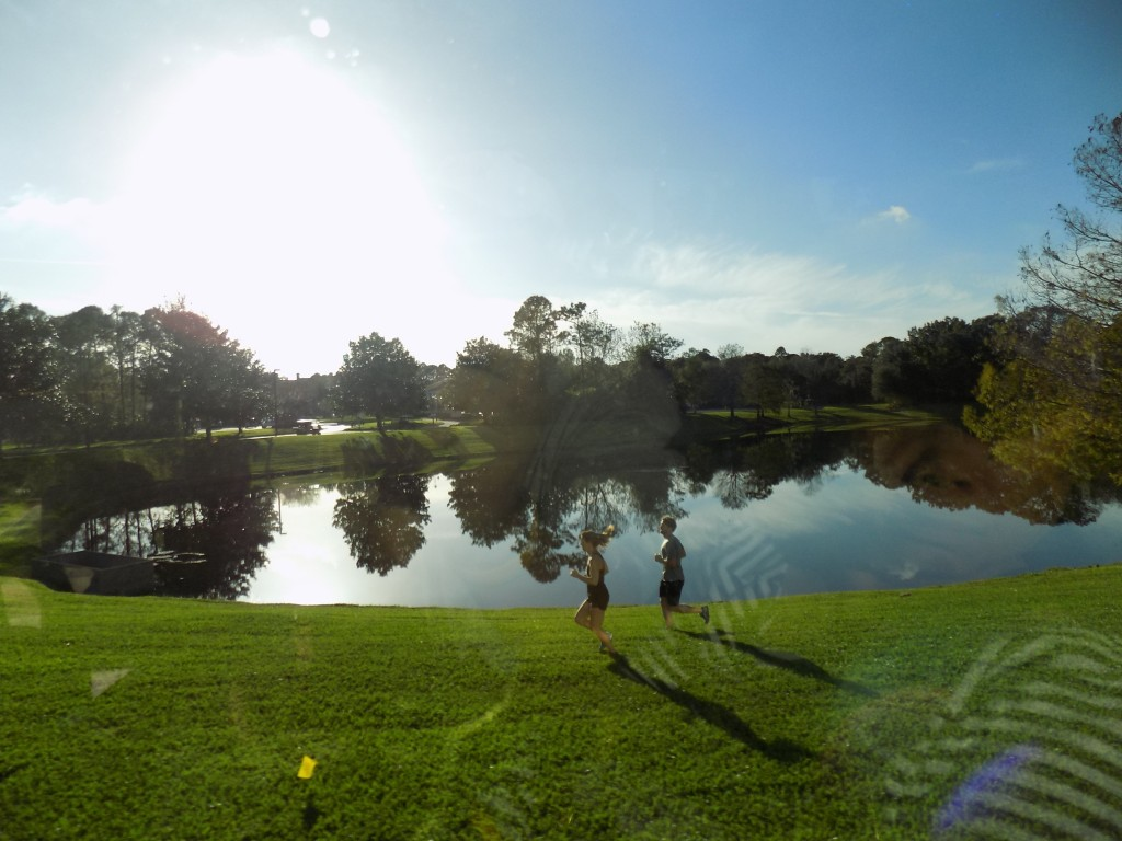 A picturesque view from the bus: Beautiful resort and runners