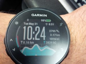 I downloaded a custom watch face for my Garmin Forerunner 235. It looks very advanced